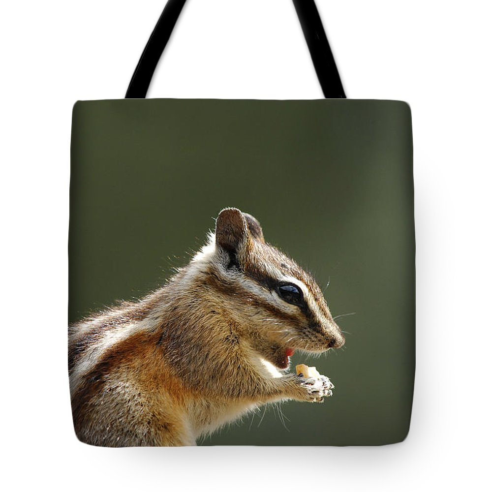 Squirrel Tote Bag featuring the photograph Tongue In Cheek by Donna Blackhall