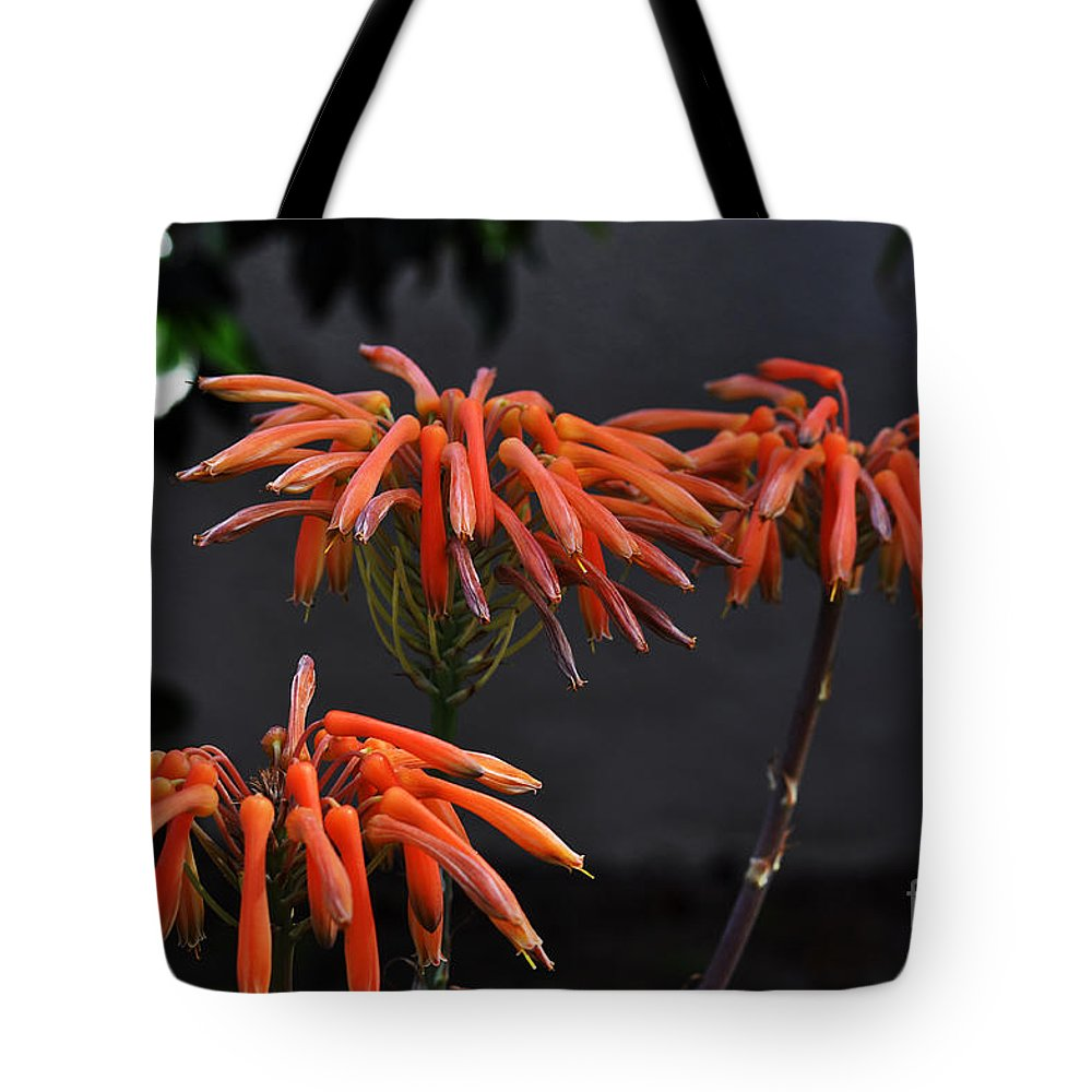 Clay Tote Bag featuring the photograph Top Of Aloe Vera by Clayton Bruster
