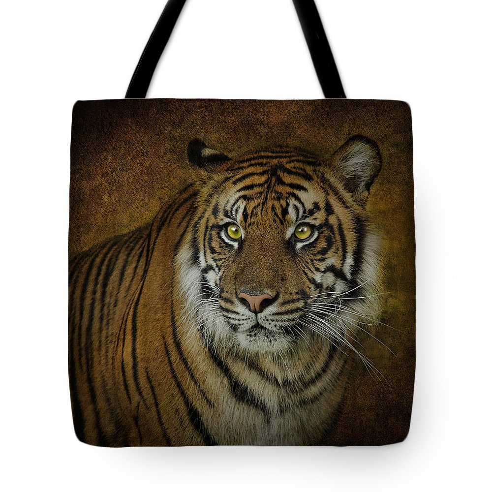 Tigers Tote Bag featuring the photograph Topaz Tiger by Pat Abbott