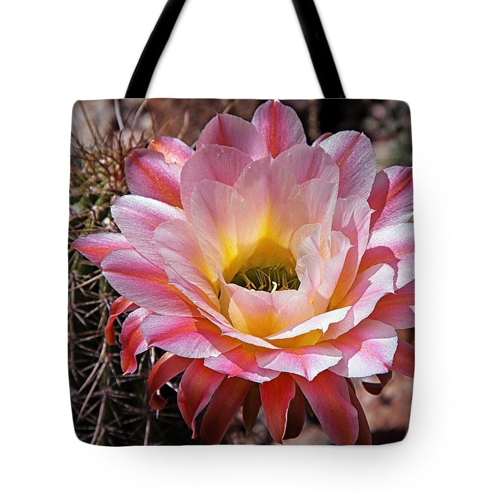 Flowers Tote Bag featuring the photograph Torch Cactus Flower by Elaine Malott