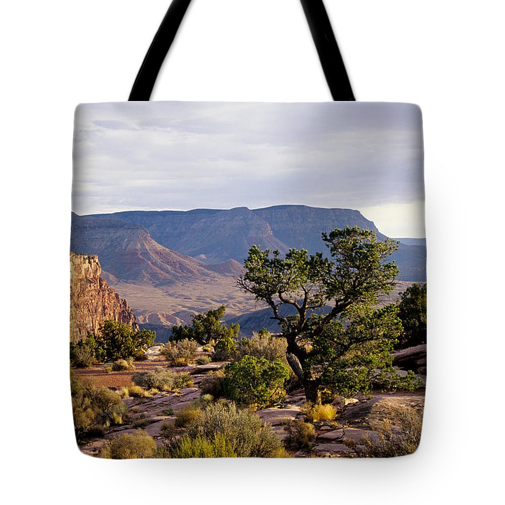 Arizona Tote Bag featuring the photograph Toroweap by Kathy McClure