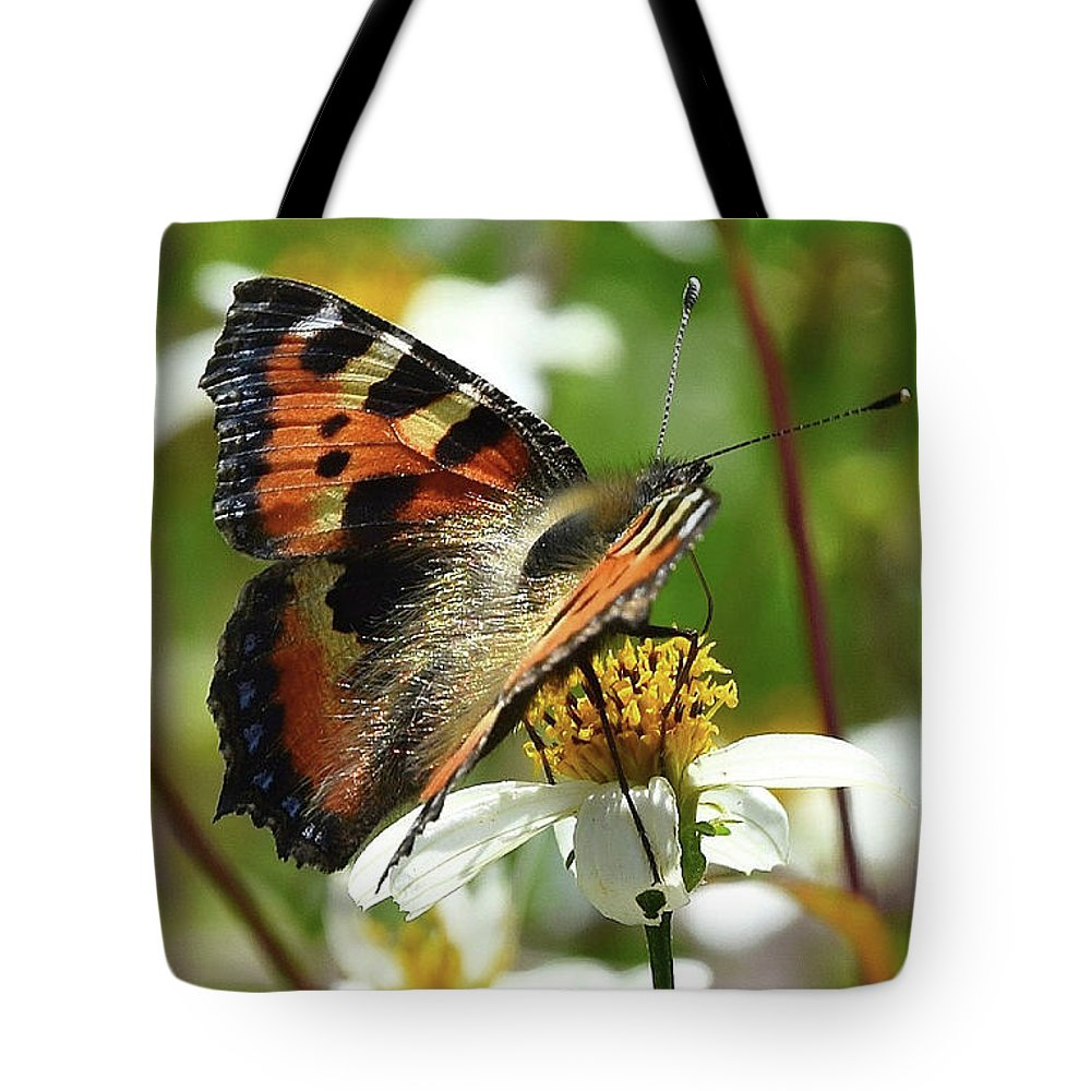Tortoise Tote Bag featuring the photograph Tortoise Butterfly by Andrea Otte
