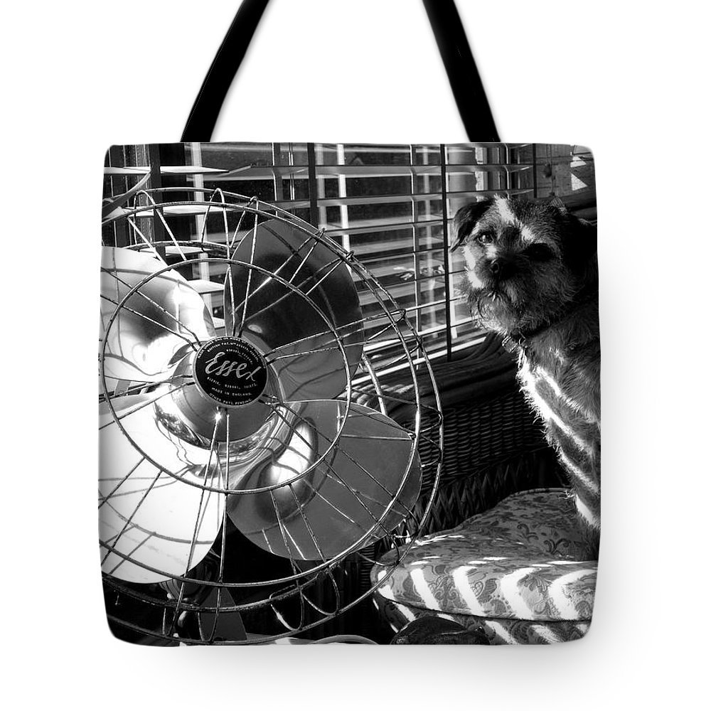 Electric Fan Tote Bag featuring the photograph Toto Checks In by Charles Stuart
