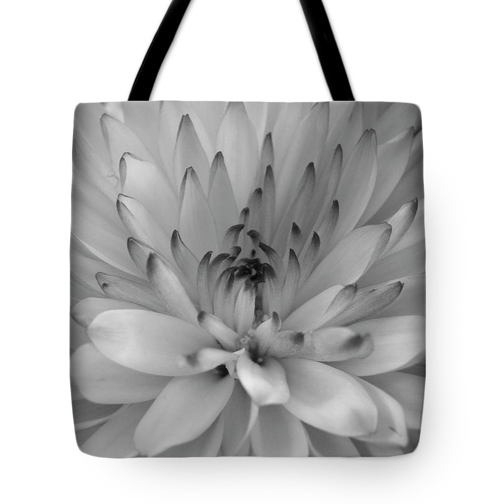 Nature Tote Bag featuring the photograph Touch Of Black by Shannon Turek