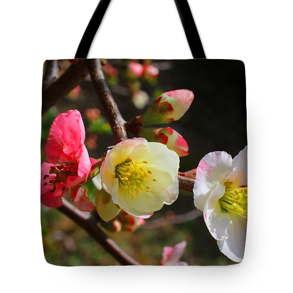 Quince Tote Bag featuring the photograph Toyo-nishiki by Kathryn Meyer