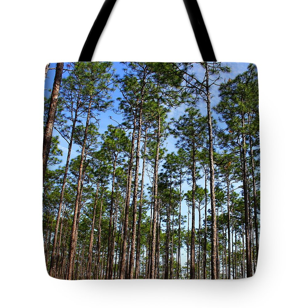 Wright Lake Loop Trail Tote Bag featuring the photograph Trail Through The Pine Forest by Barbara Bowen