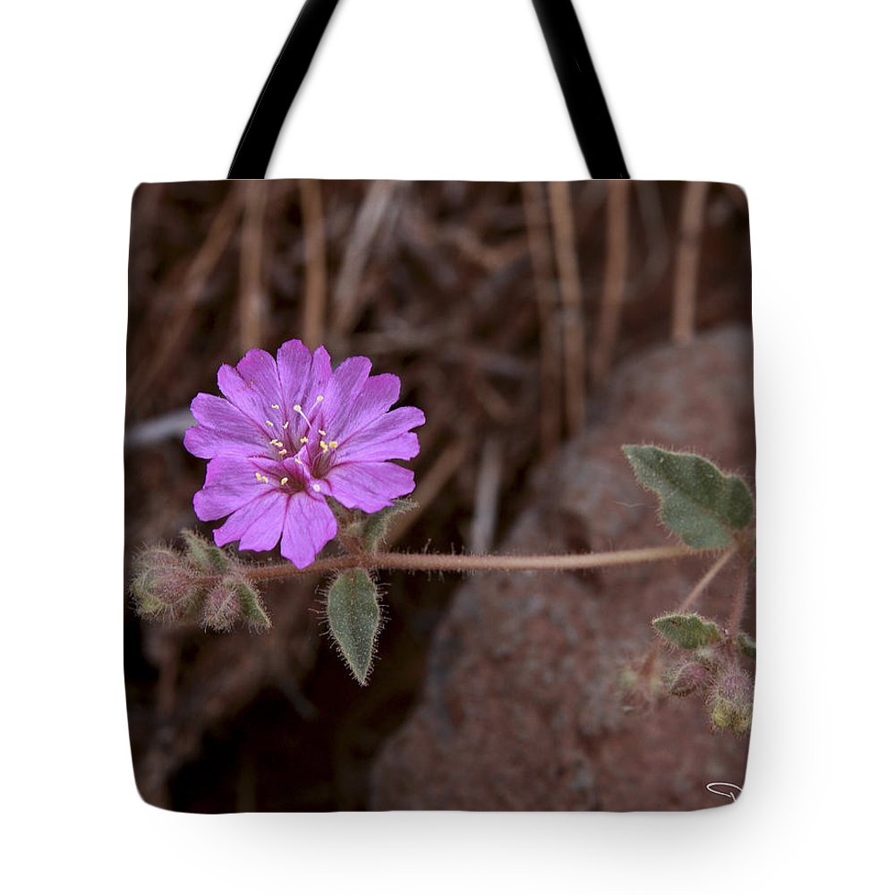 Nature Tote Bag featuring the photograph Trailing Four O'clock by David Salter