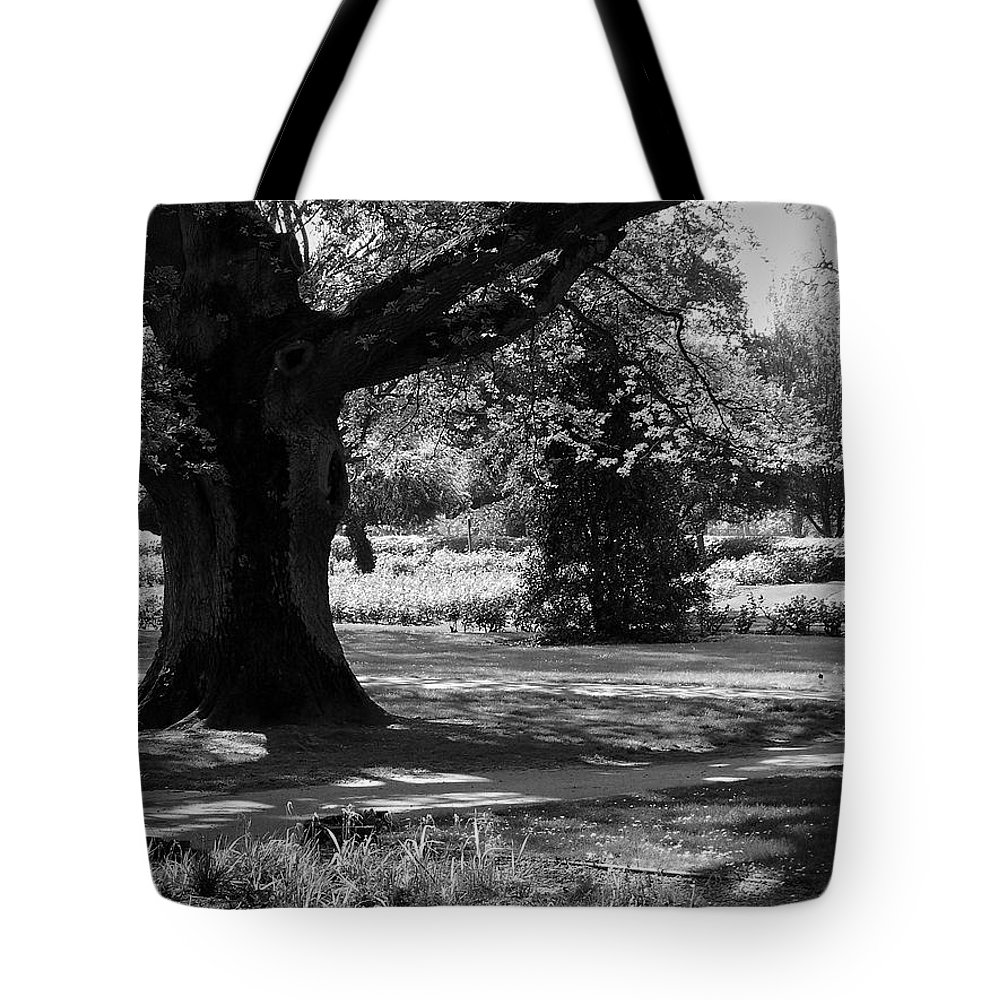 Irish Tote Bag featuring the photograph Tralee Town Park Ireland by Teresa Mucha