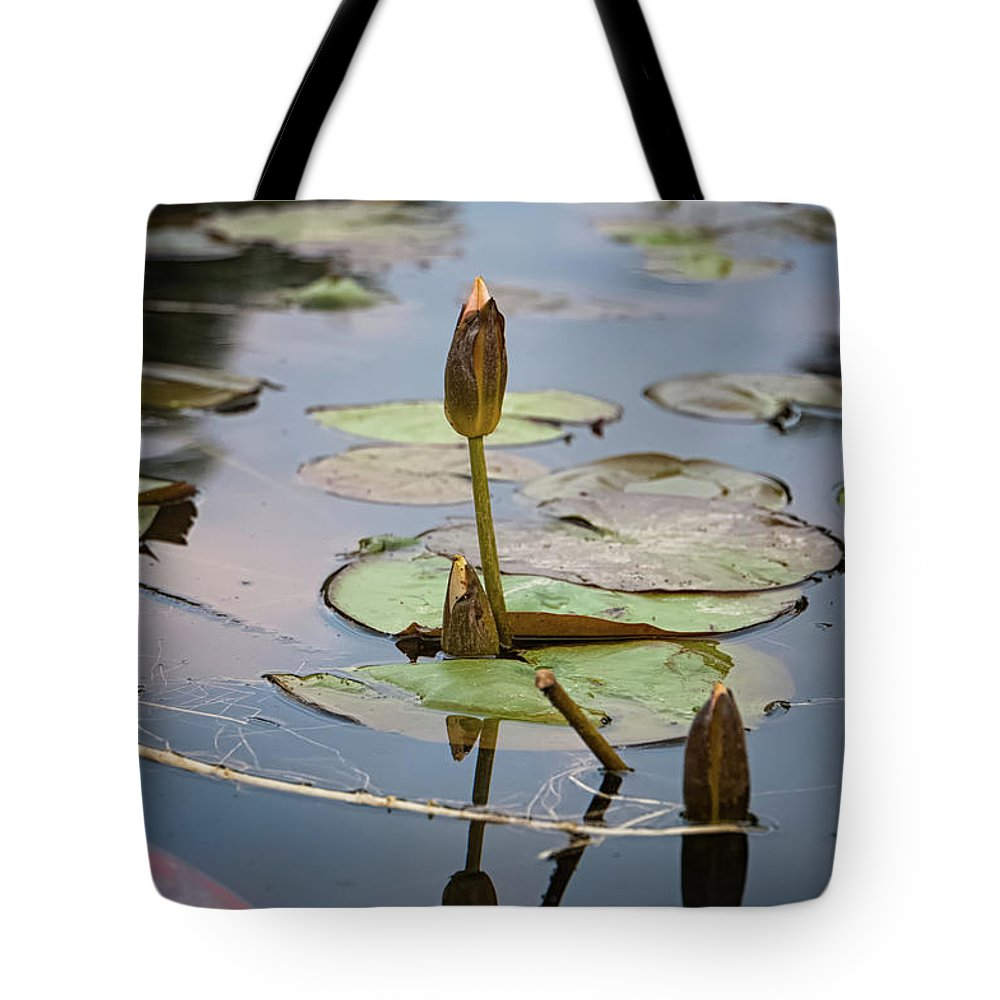 Reflection Tote Bag featuring the photograph Tranquil Reflections by Joshua Redwine