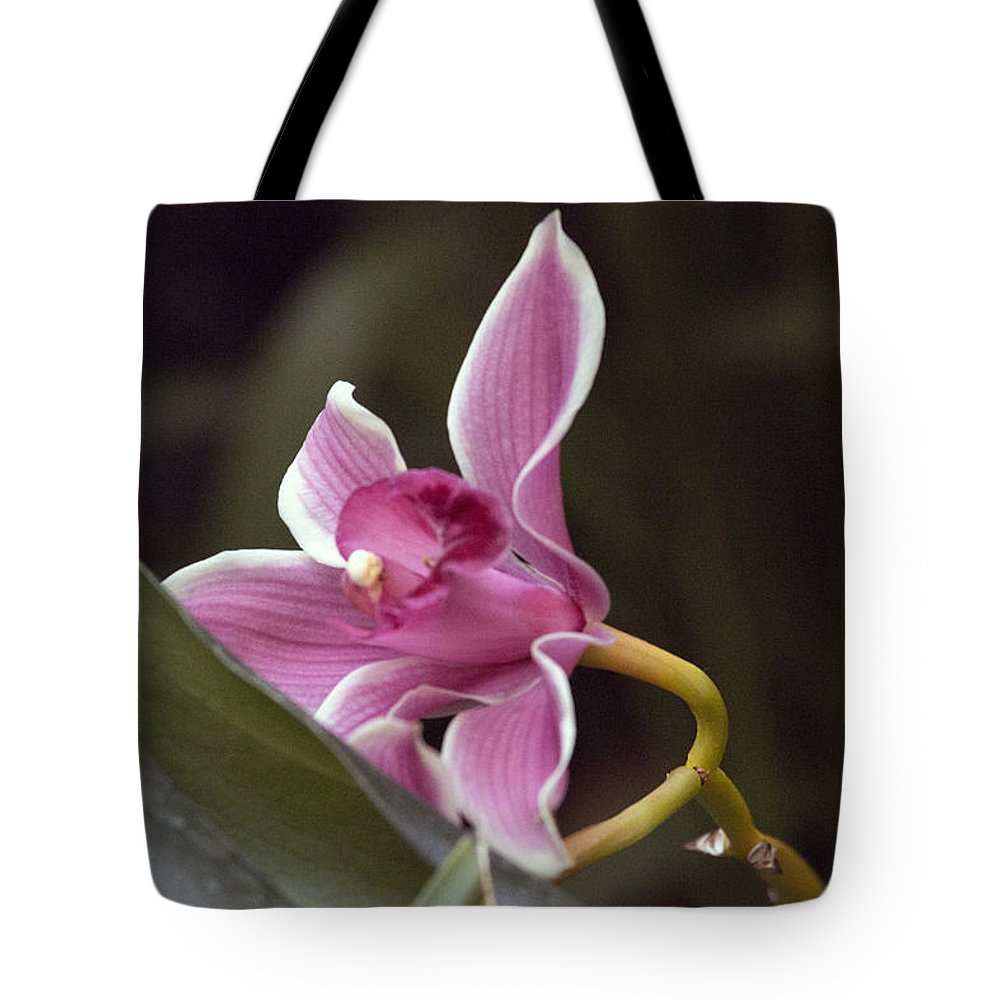 Flowers Tote Bag featuring the photograph Tranquility by Charles Wood II