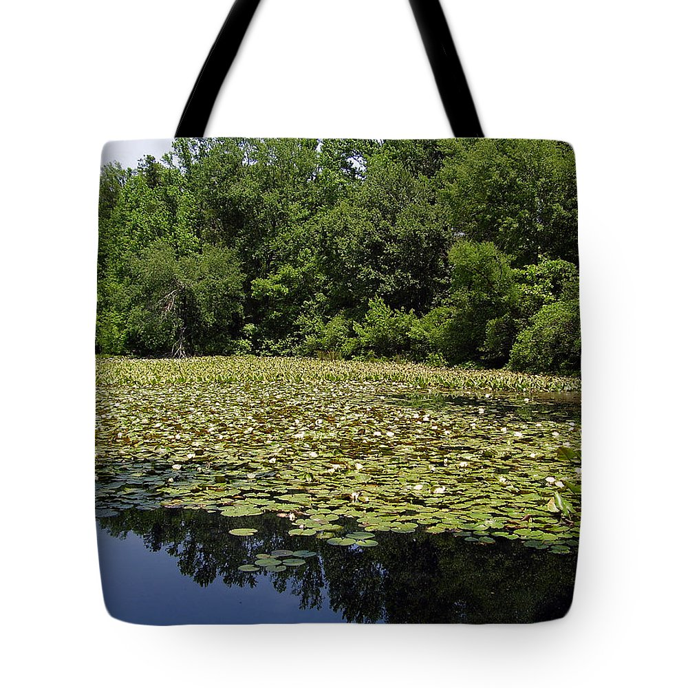 Tranquility Tote Bag featuring the photograph Tranquility by Flavia Westerwelle