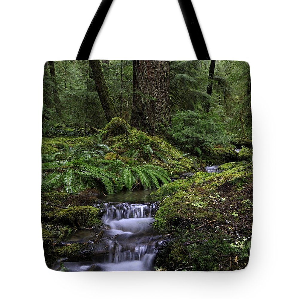 Sol Duc Falls Tote Bag featuring the photograph Tranquility In The Forest by Tim Hauf