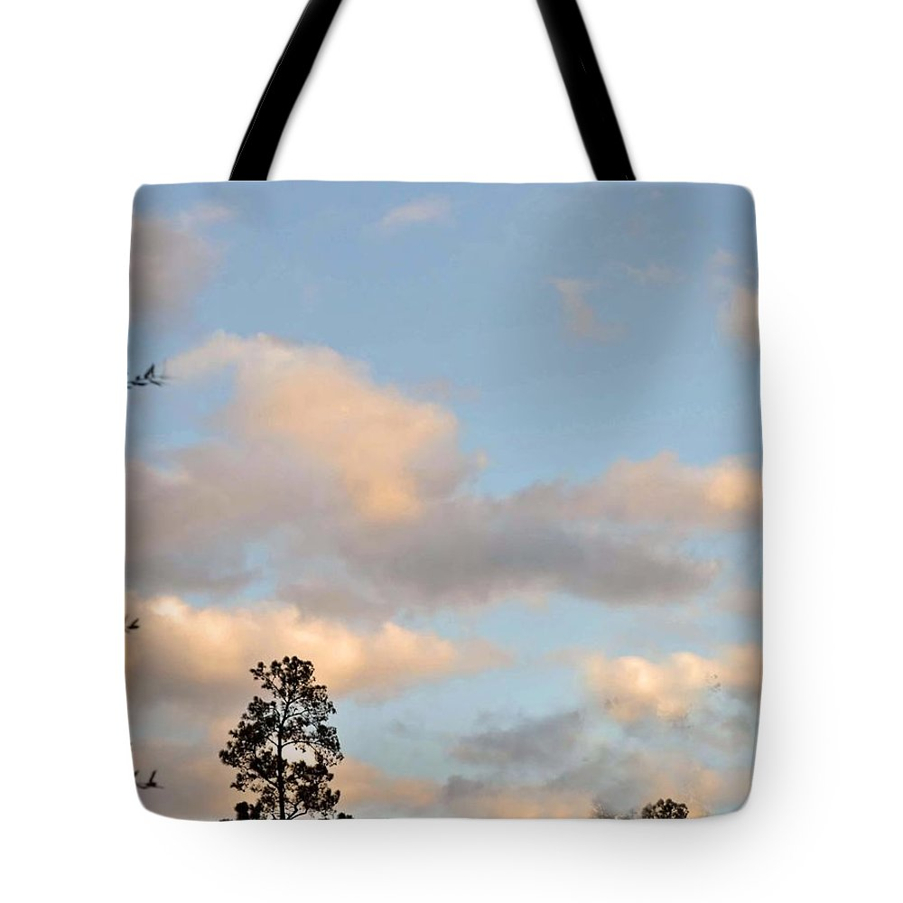 Clouds Tote Bag featuring the photograph Traveling Clouds by Judith Russell-Tooth