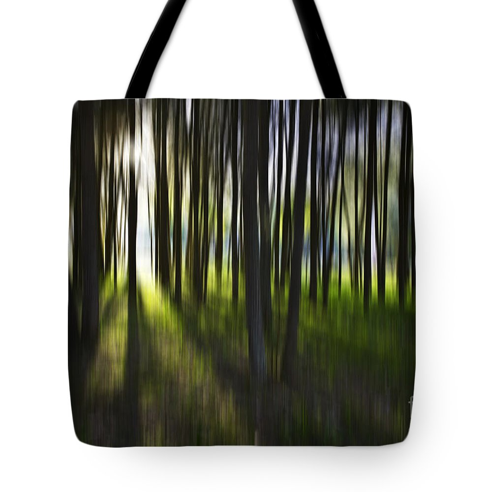 Trees Abstract Tree Lines Forest Wood Tote Bag featuring the photograph Tree Abstract by Sheila Smart Fine Art Photography