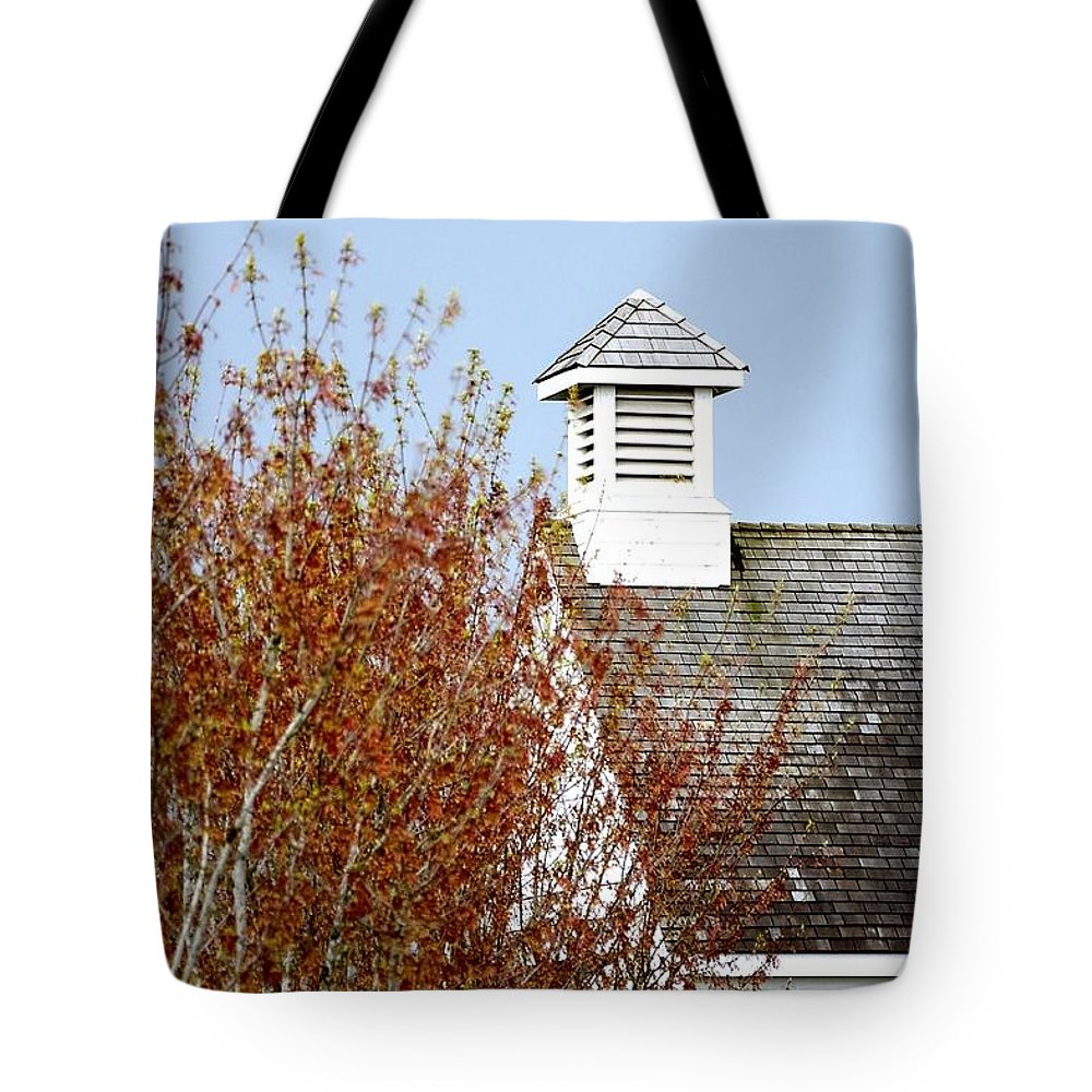 Or Tote Bag featuring the photograph Tree And School House 795 by Jerry Sodorff