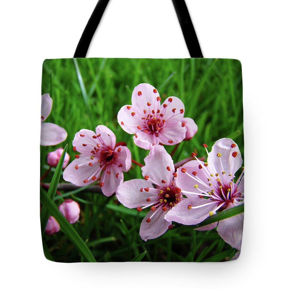 �blossoms Artwork� Tote Bag featuring the photograph Tree Blossoms 4 Spring Flowers Art Prints Giclee Flower Blossoms by Baslee Troutman