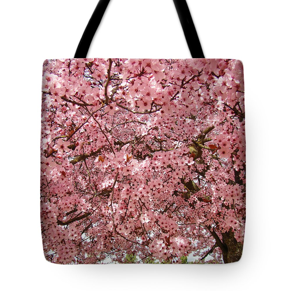 Tree Tote Bag featuring the photograph Tree Blossoms Pink Blossoms Art Prints Giclee Flower Landscape Artwork by Baslee Troutman