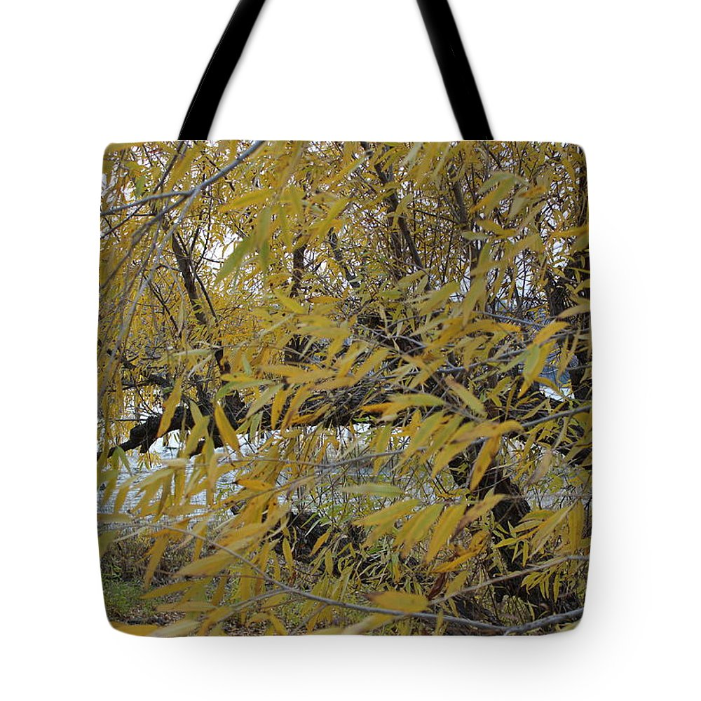 Tree Tote Bag featuring the photograph Tree By The Water by Cheyenne Cacy
