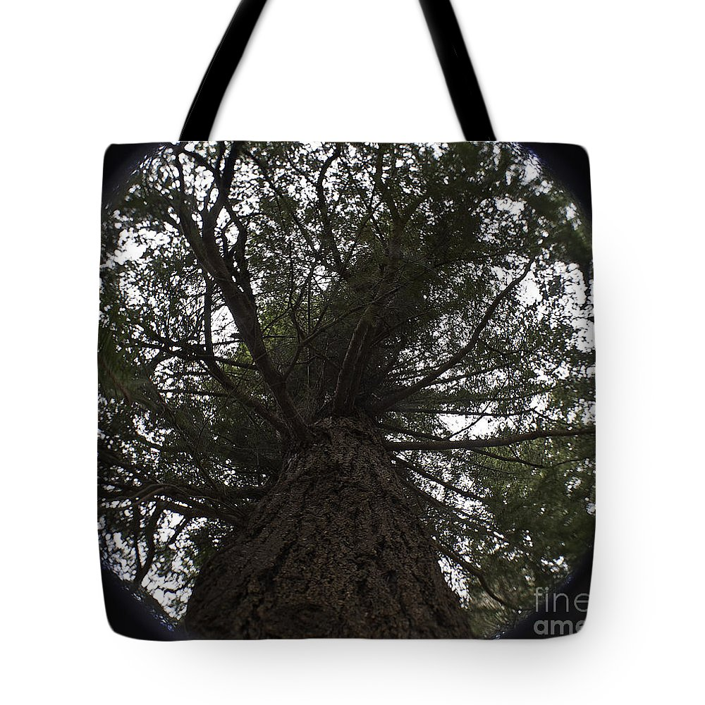 Art Tote Bag featuring the photograph Tree In The Round by Clayton Bruster