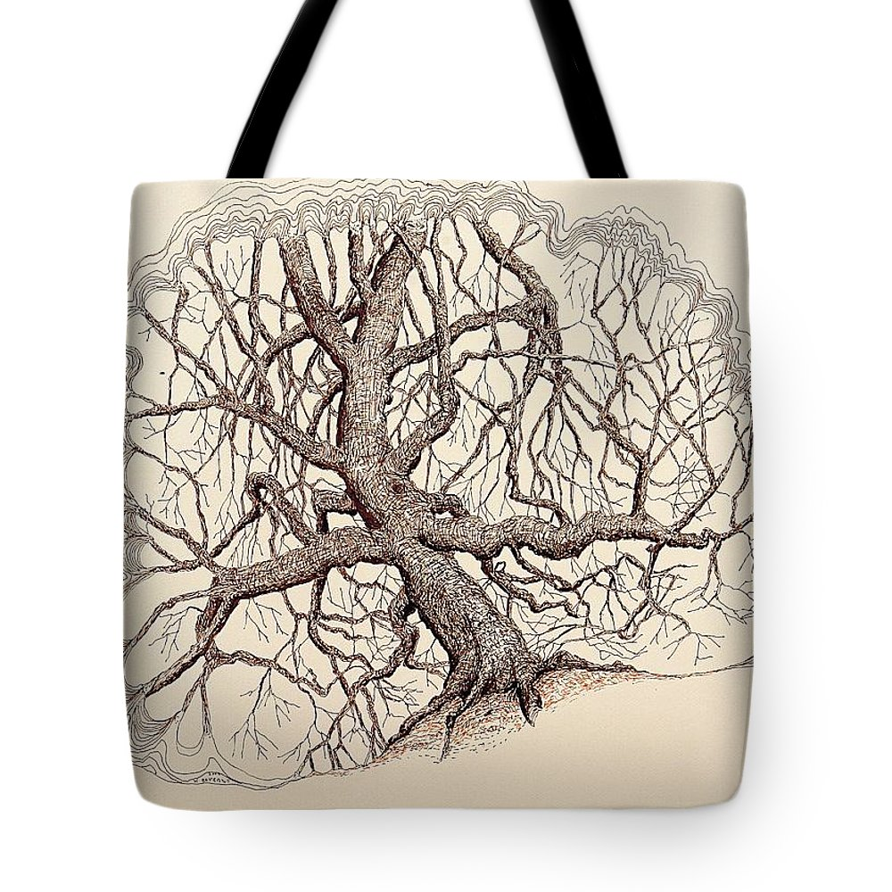Tree Tote Bag featuring the drawing Tree In Winter II by Kerry Beverly