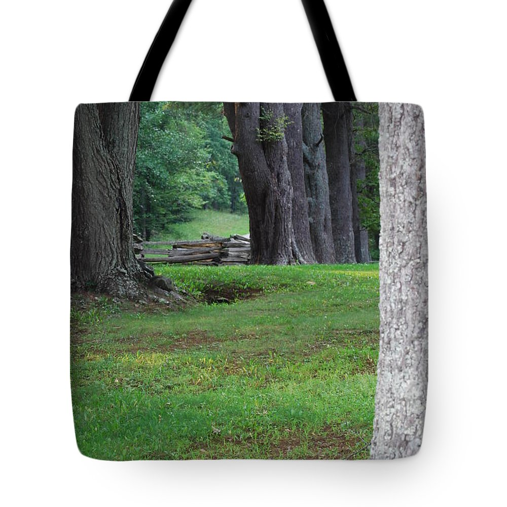 Trees Tote Bag featuring the photograph Tree Line by Eric Liller