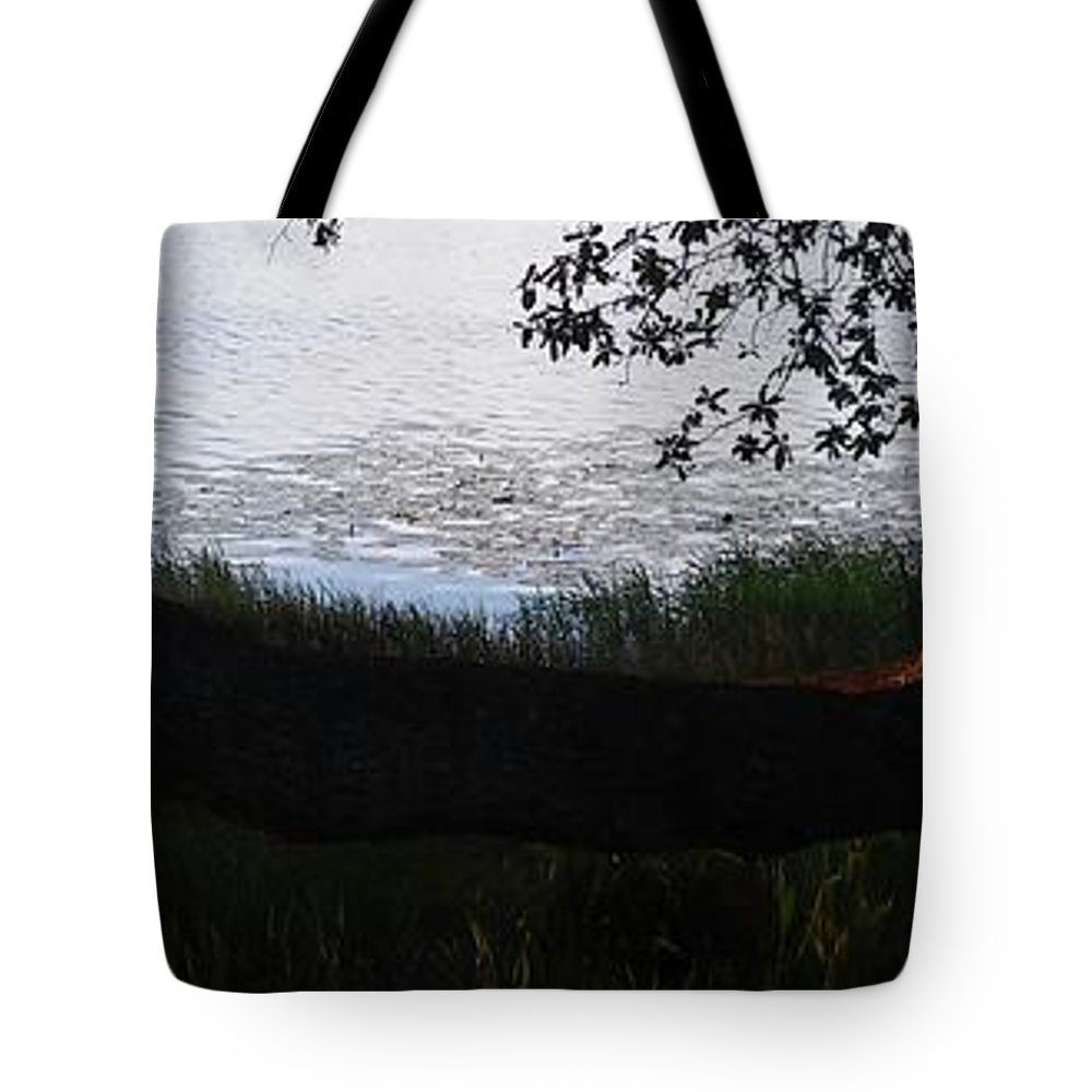 Tree Near The Water Tote Bag featuring the photograph Tree Near The Water by John Hiatt