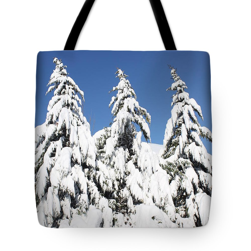 Snow Tote Bag featuring the photograph Tree-o Of Evergreens by Lauri Novak