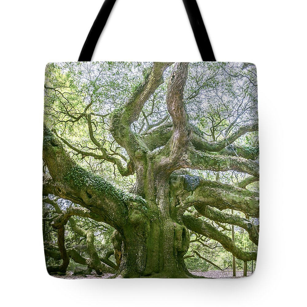 South Carolina Tote Bag featuring the photograph Tree Of History by Elvis Vaughn