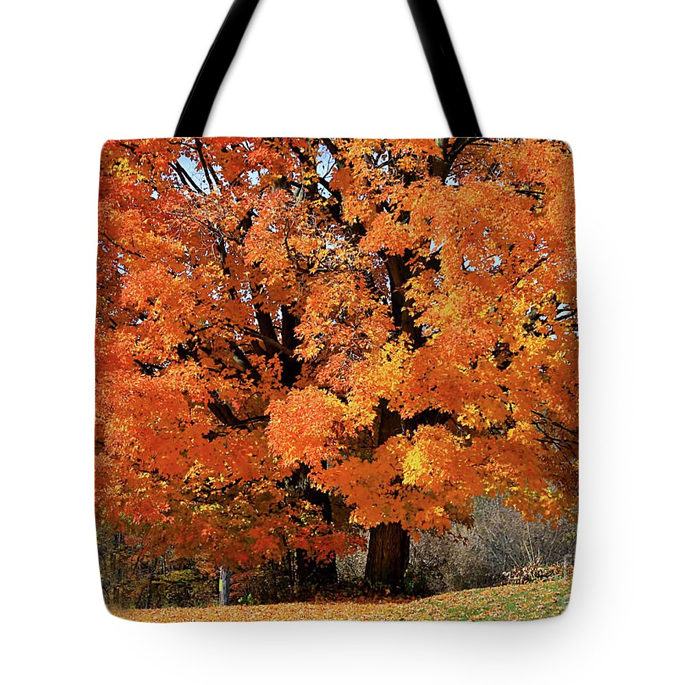 Autumn Tote Bag featuring the photograph Tree On Fire by Deborah Benoit