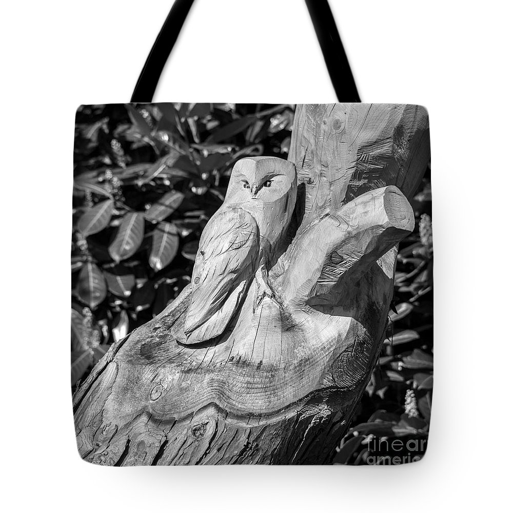 Tree Tote Bag featuring the photograph Tree Owl by Rob Hawkins