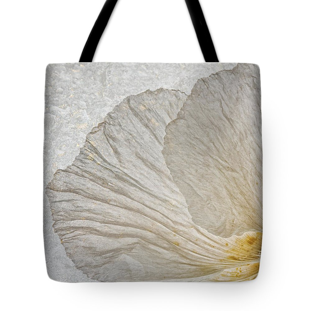 Tree Poppy Tote Bag featuring the photograph Tree Poppy by Ann Garrett