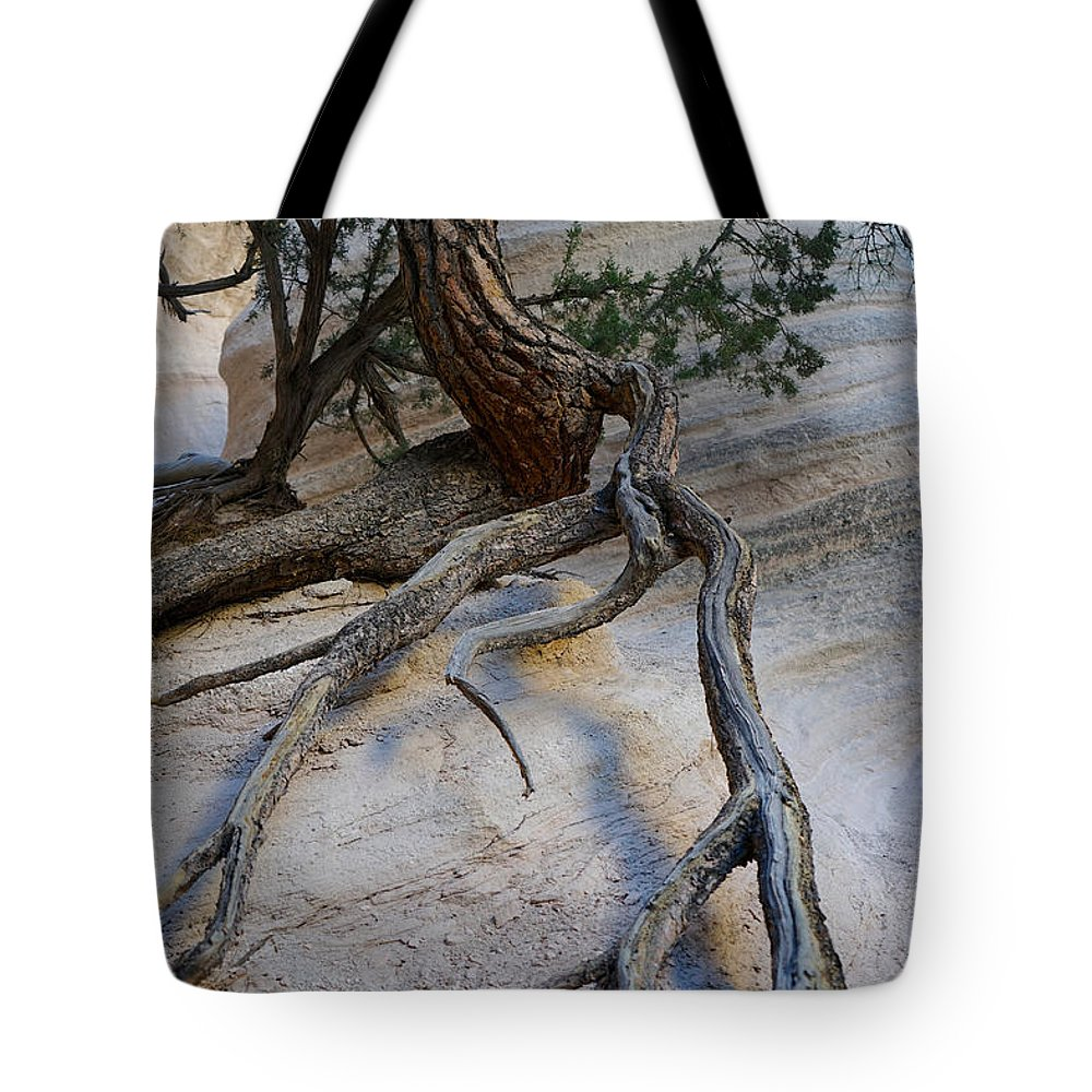 Tree Tote Bag featuring the photograph Tree Roots On The Tent Rock by Shirley Stevenson Wallis