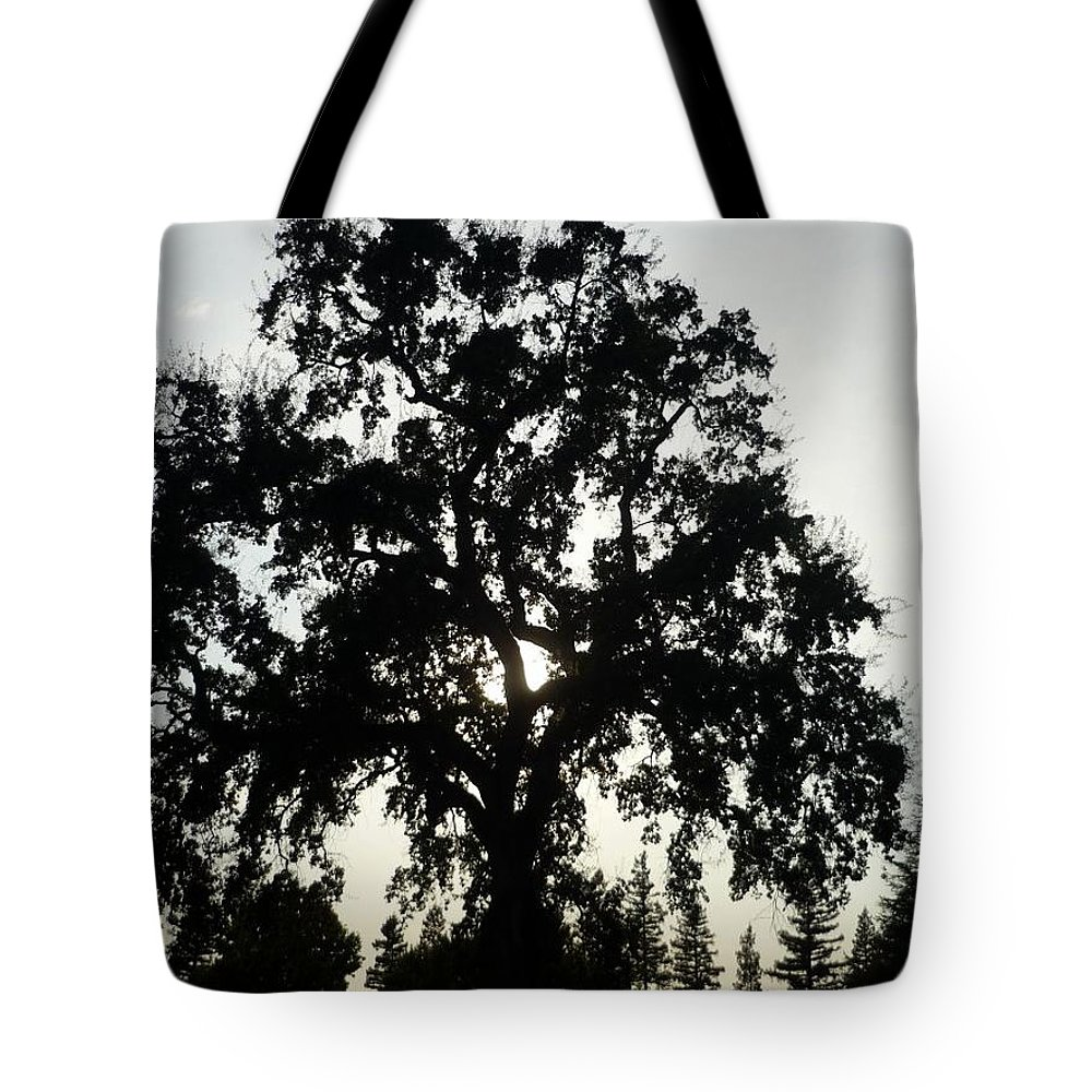 Silhouette Tote Bag featuring the photograph Tree Silhouette by Bethany Morrow