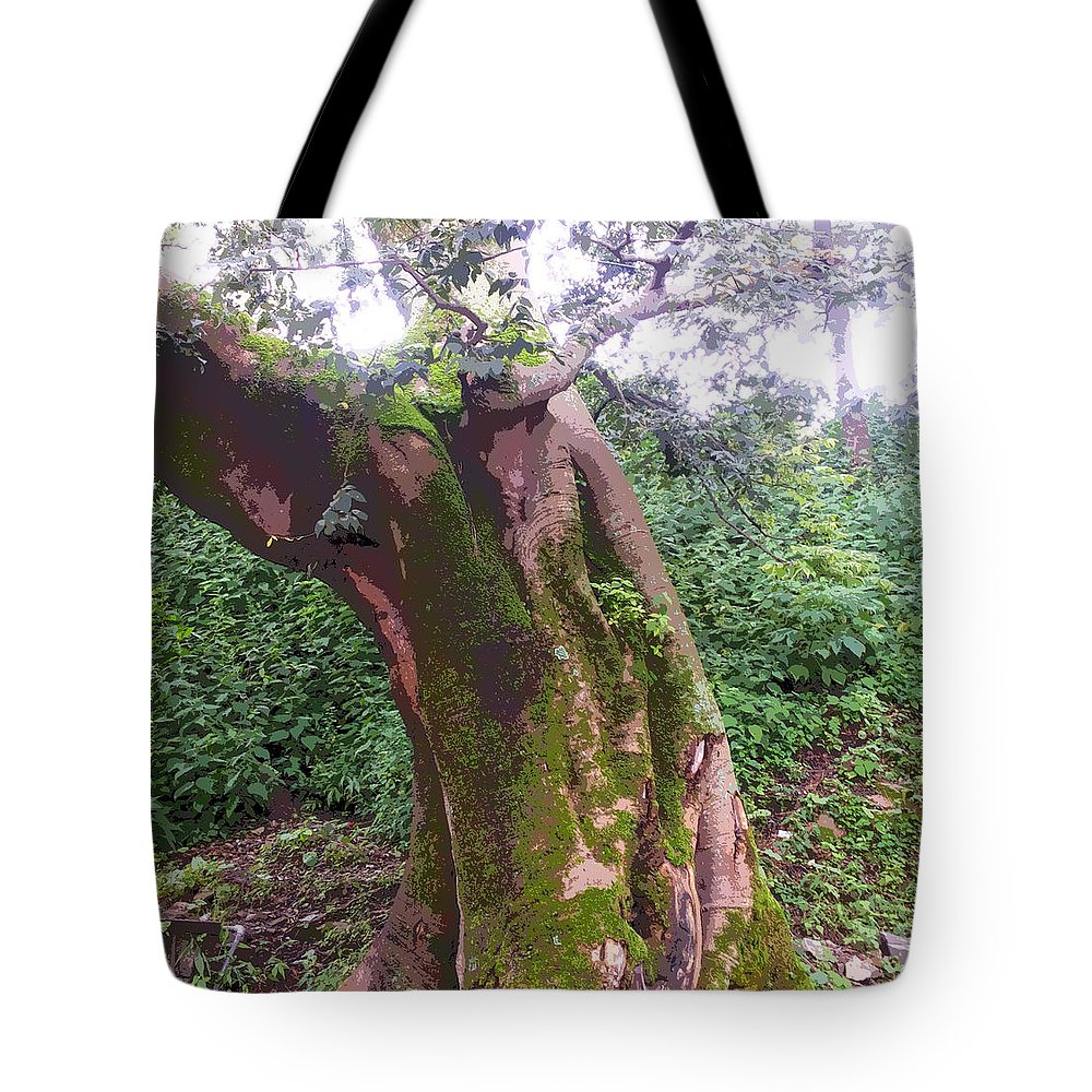 Tree Tote Bag featuring the photograph Tree by Sweety Vyas