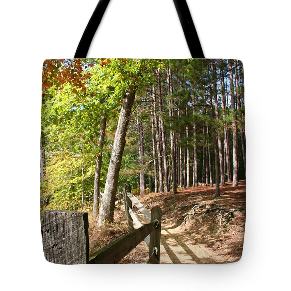 Tree Tote Bag featuring the photograph Tree Trail by Margie Wildblood