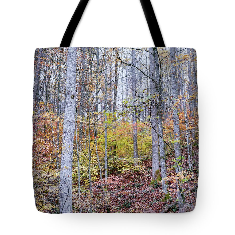 Trees Tote Bag featuring the photograph Trees In Autumn by Cris Ritchie