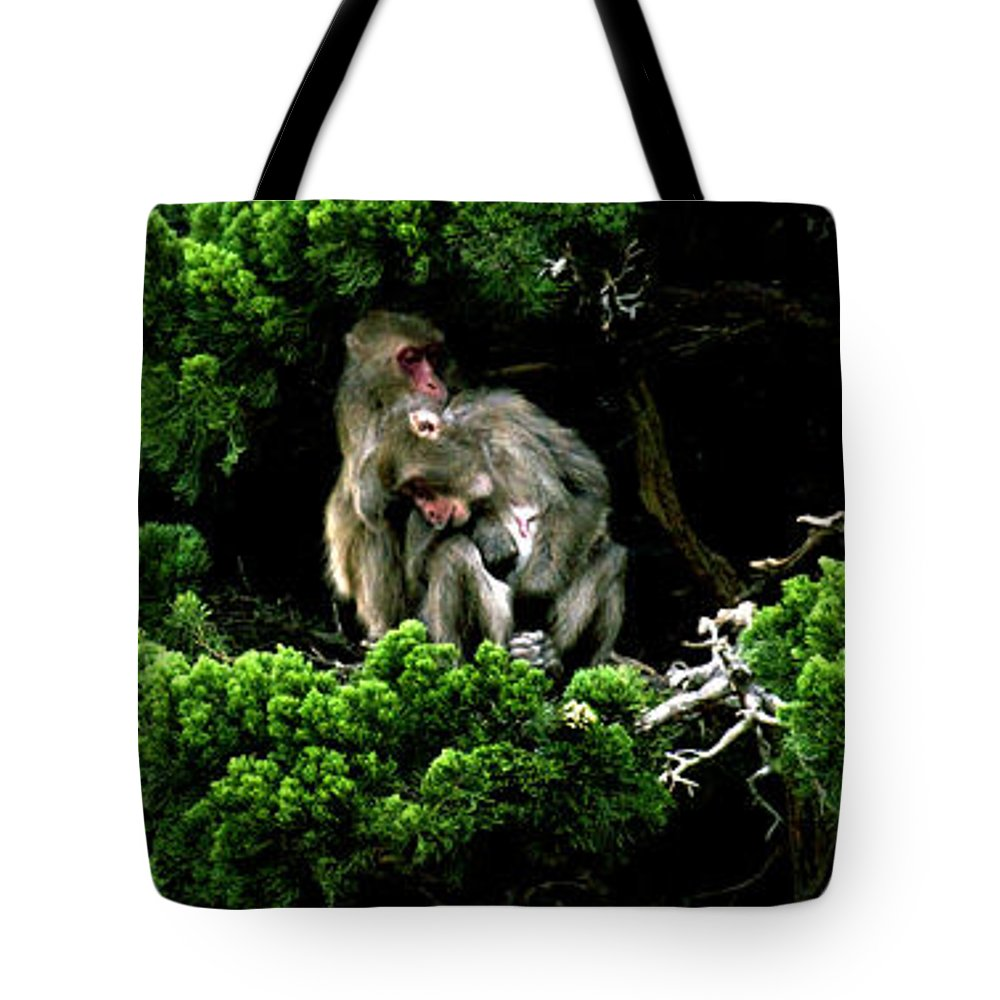 Trees Tote Bag featuring the photograph Trees In Japan 10 by George Cabig