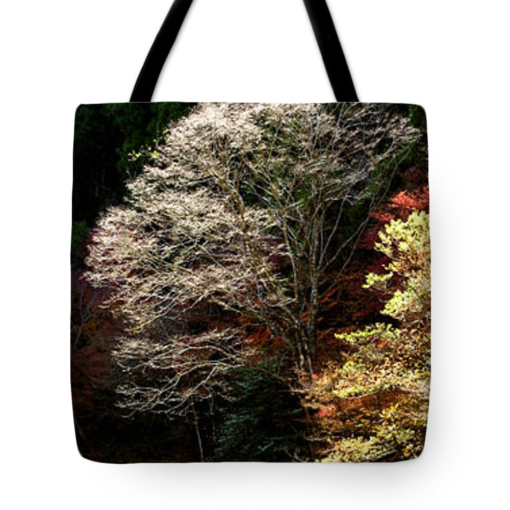 Trees Tote Bag featuring the photograph Trees In Japan 11 by George Cabig