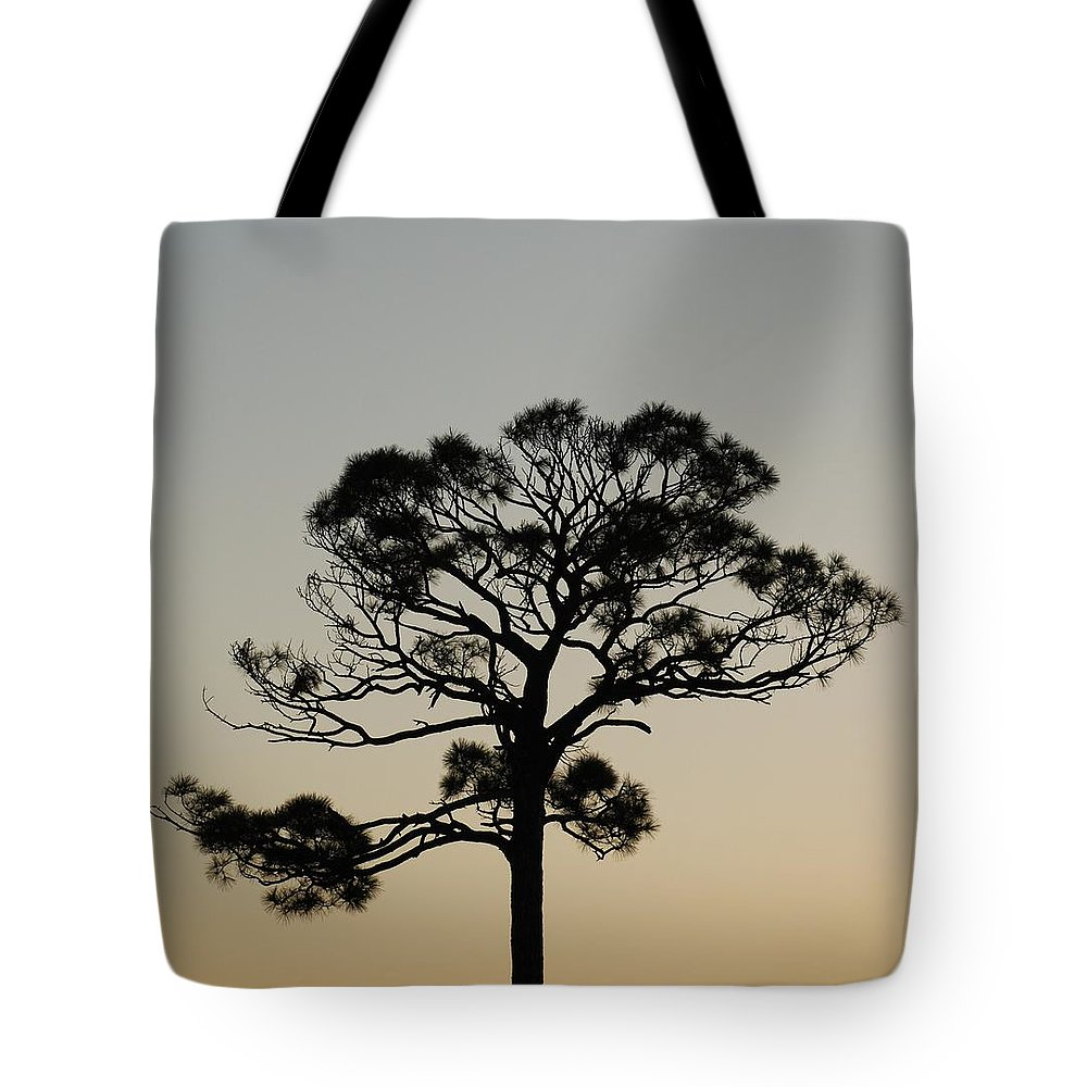 Tree Tote Bag featuring the photograph Trees In Sunset by Rob Hans