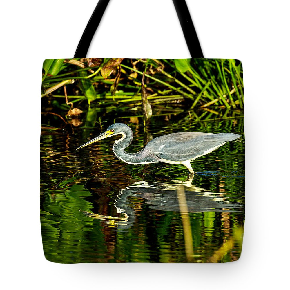 Tricolored Heron Tote Bag featuring the photograph Tricolored Heron 5 by Ben Graham
