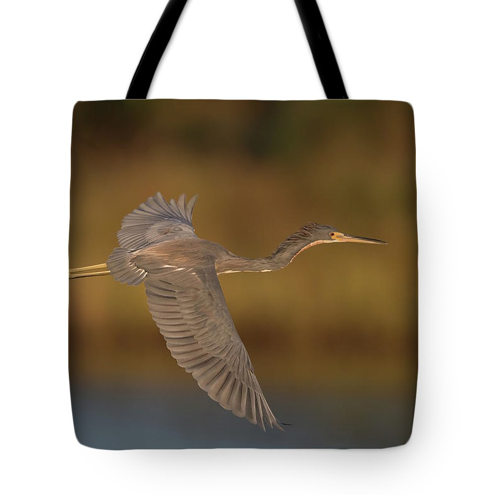 Tricolored Heron Tote Bag featuring the photograph Tricolored Heron by George DeCamp