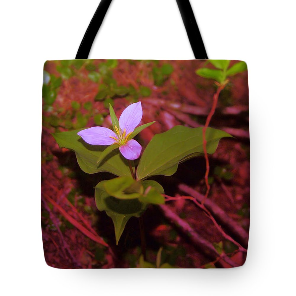Flowers Tote Bag featuring the photograph Trilliam by Jeff Swan