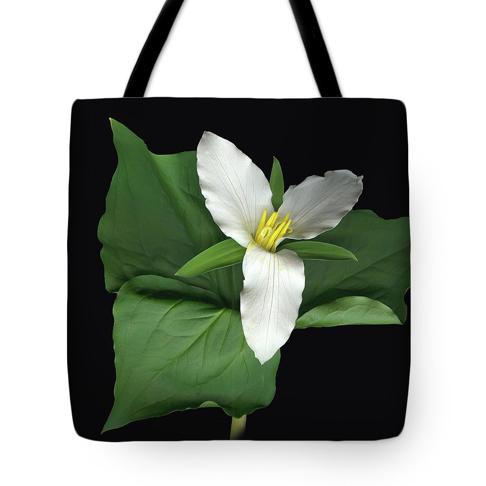 Trillium. Wake Robin Tote Bag featuring the digital art Trillium by Sandi F Hutchins