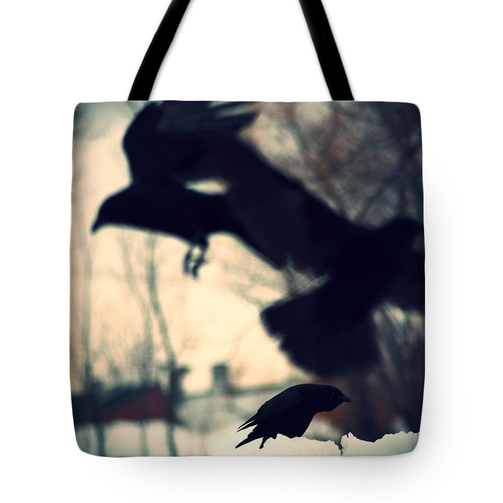 Three Crows Tote Bag featuring the photograph Trio In Motion by Gothicrow Images