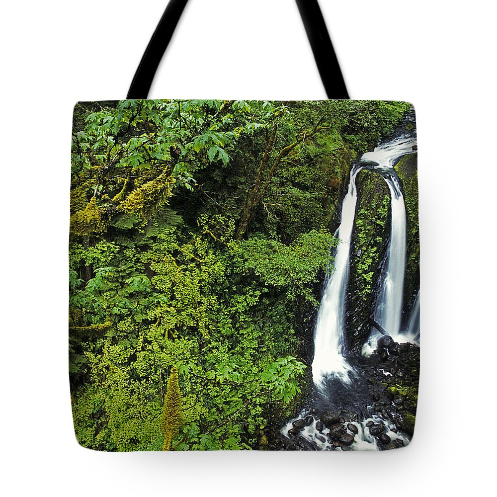 Scenic Tote Bag featuring the photograph Triple Falls by Doug Davidson