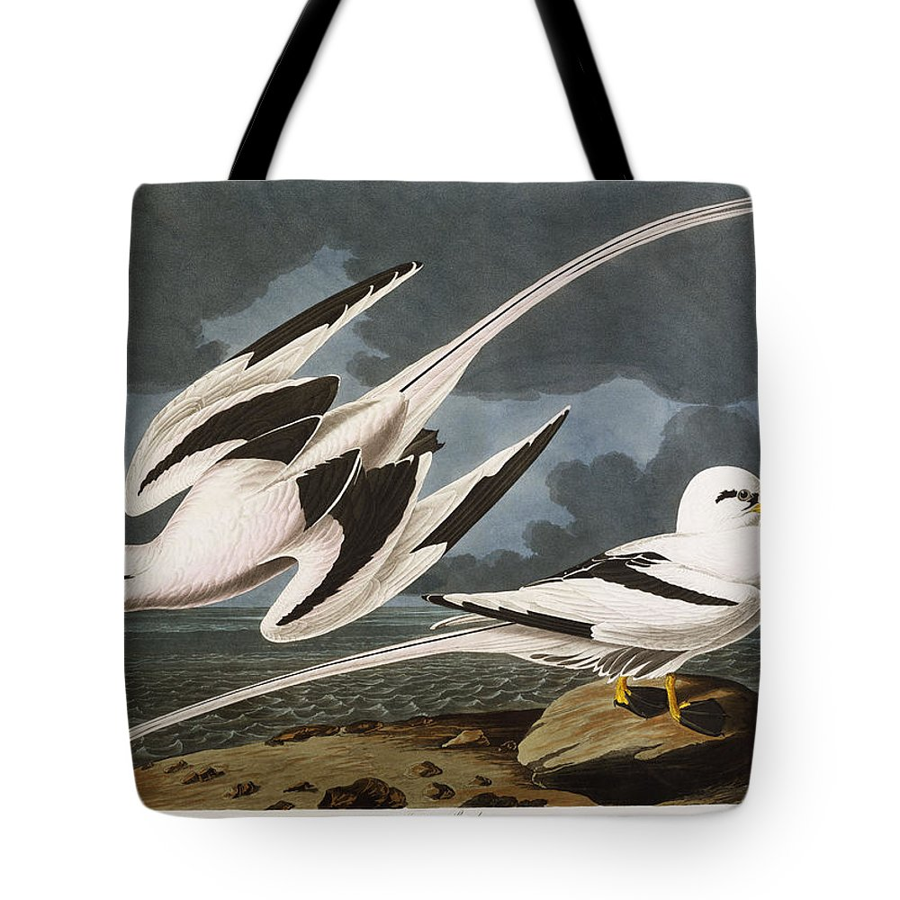 Tropic Bird (phaeton Athreus) Plate Cclxii From 'the Birds Of America' (aquatint & Engraving With Hand-colouring) By John James Audubon (1785-1851) Tote Bag featuring the painting Tropic Bird by John James Audubon
