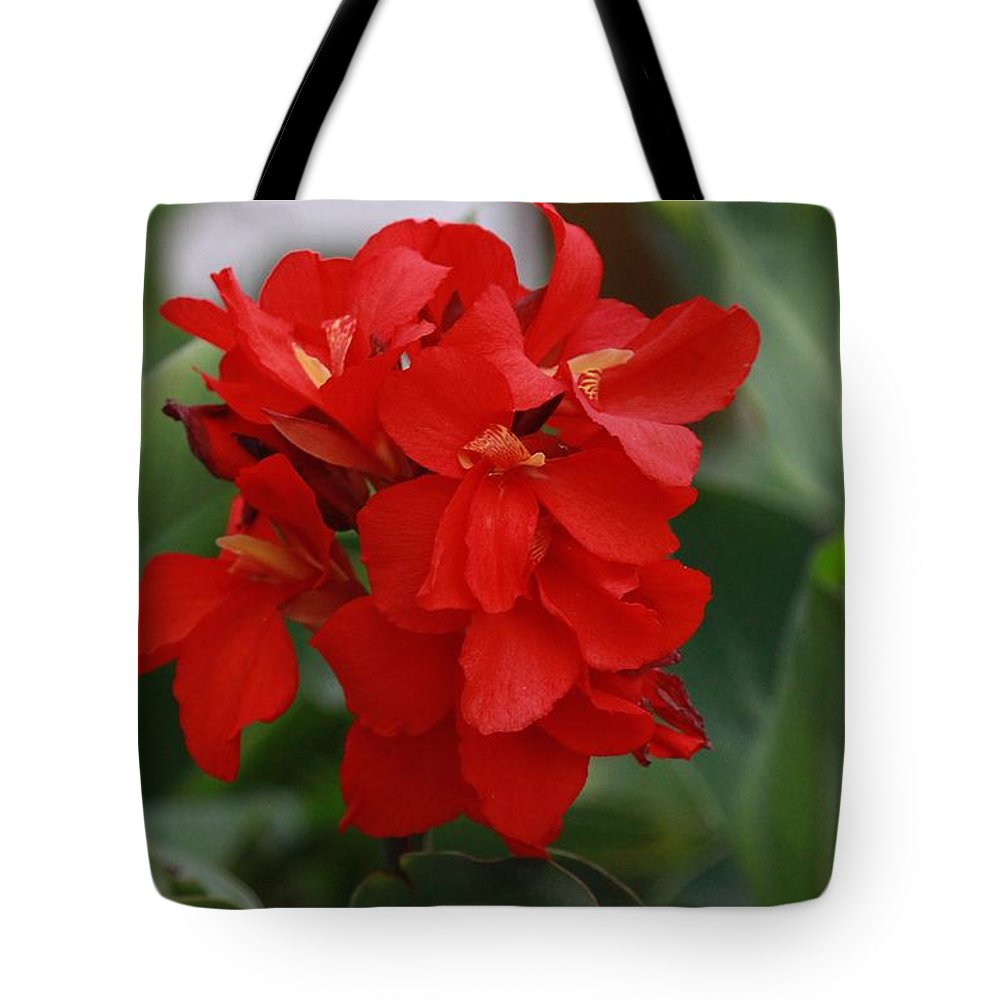 Tropical Red Canna Lilly Tote Bag featuring the photograph Tropical Red Canna Lilly by Leanne Matson