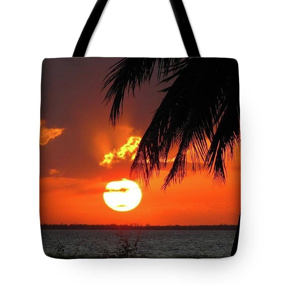 Tropical Tote Bag featuring the pyrography Tropical Sunset by Dan Burroughs