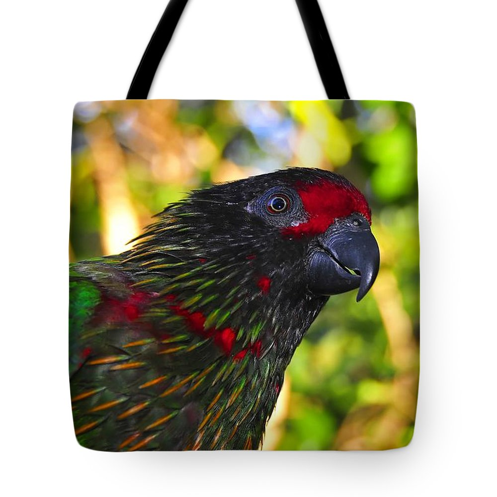 Bird Tote Bag featuring the photograph Tropical Wonder by David Lee Thompson
