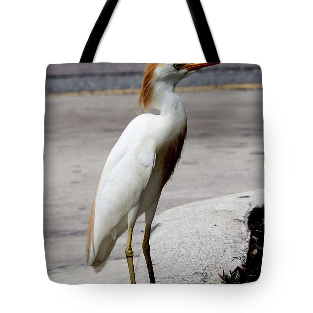 Birds Tote Bag featuring the photograph Trump Egret by Roger Epps